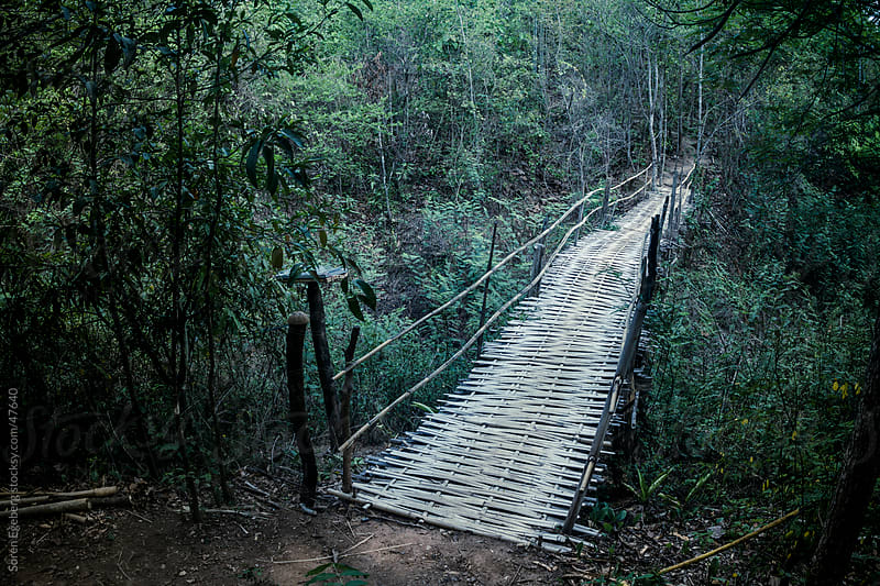 Primitive bamboo bridge with handrails for crossing a river in the jungle  by Søren Egeberg Photography for Stocksy United