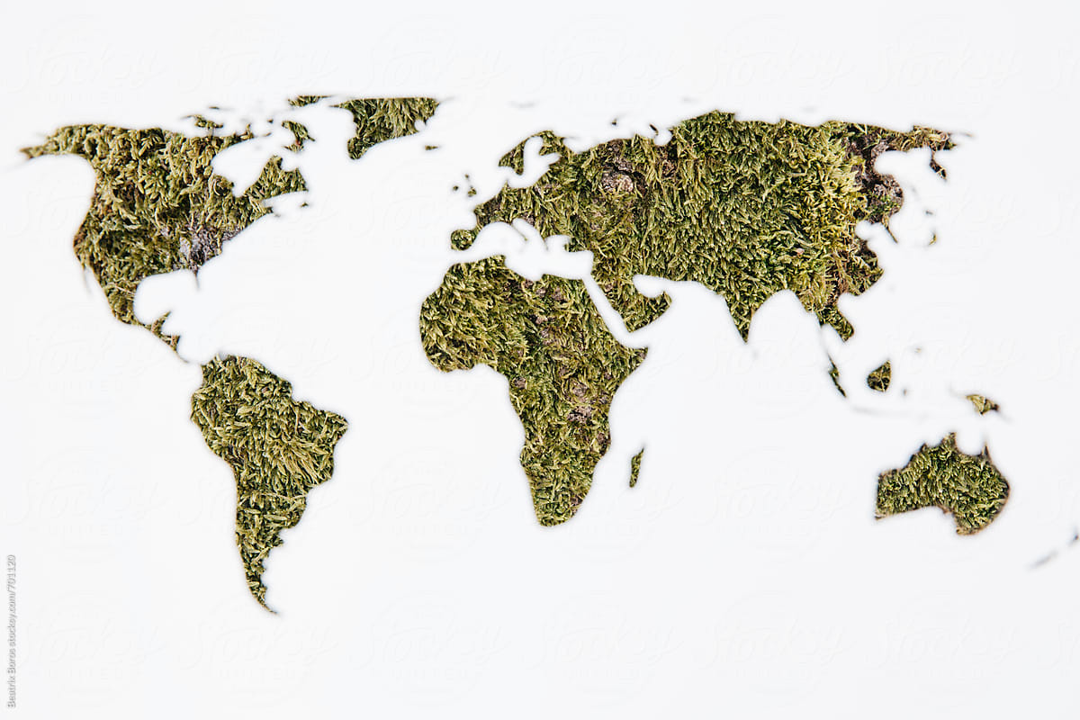 Moss photographed through a white world map stencil by Beatrix Boros ...