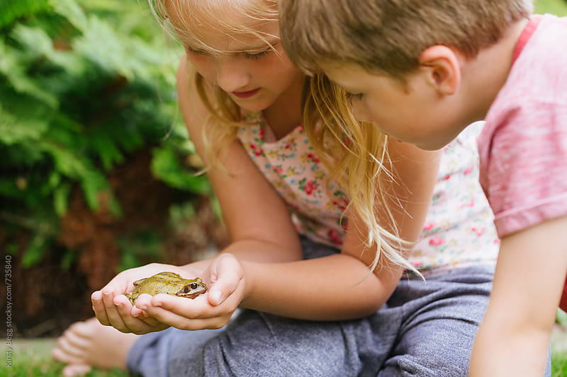 Children look at frog closely while holding it in the garden by Kirsty Begg for Stocksy United