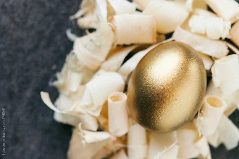 Easter: Golden Egg In Nest Of Wood Shavings by Sean Locke for Stocksy United