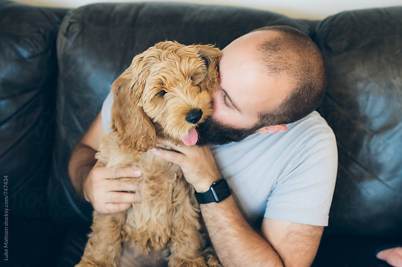 Young Bearded Man Kissing Labradoodle Puppy by Luke Mattson for Stocksy United