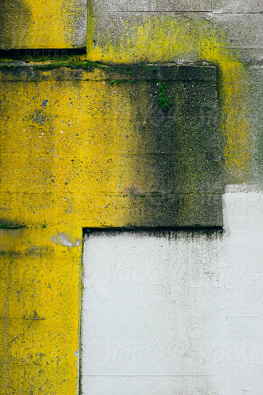 Peeling paint and moss covering building wall exterior by Paul Edmondson for Stocksy United