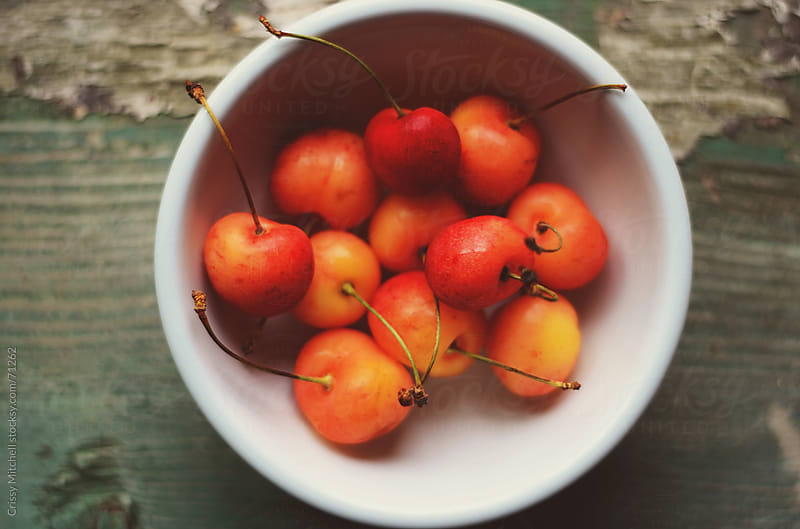 Bowl of cherries by Crissy Mitchell for Stocksy United