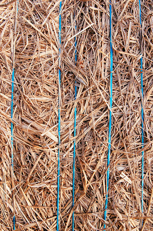 close-up of a bale of hay by Deirdre Malfatto for Stocksy United