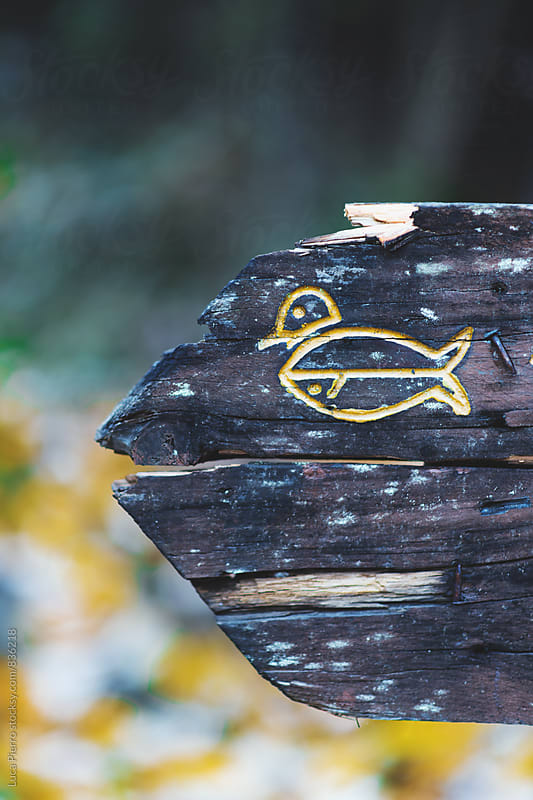 Wooden ducks sign in a park by Luca Pierro for Stocksy United