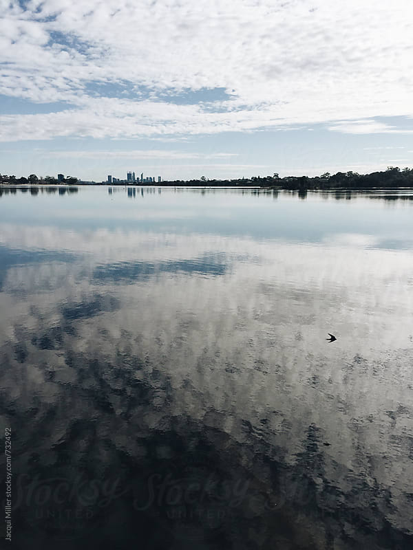 Morning view across Canning River toward Perth, Western Australia, with cloud reflections on water by Jacqui Miller for Stocksy United