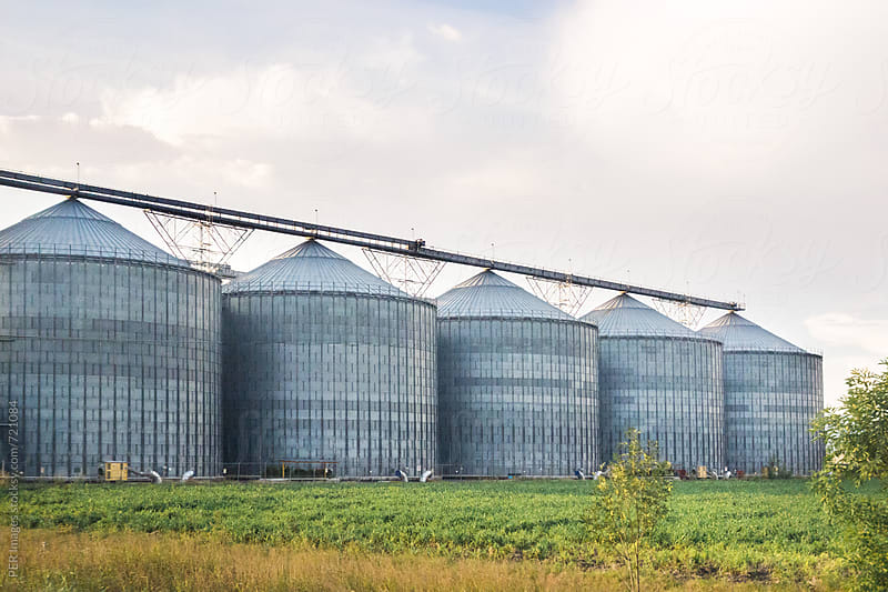 Row of agricultural silos at large plant by Per Swantesson for Stocksy United