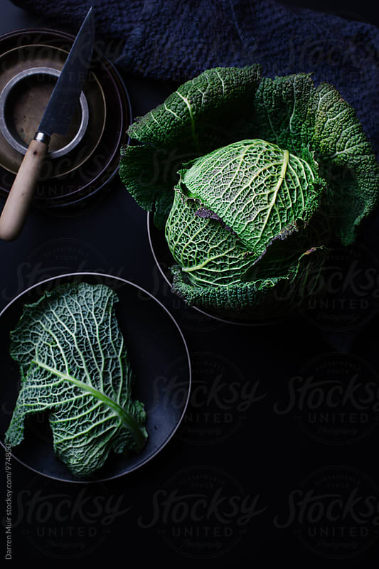 Savoy cabbage. Savoy cabbage on a dark background. by Darren Muir for Stocksy United