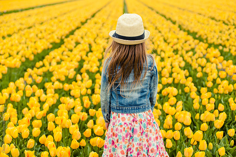 Backside view of little girl standing in yellow tulip field by Cindy Prins for Stocksy United