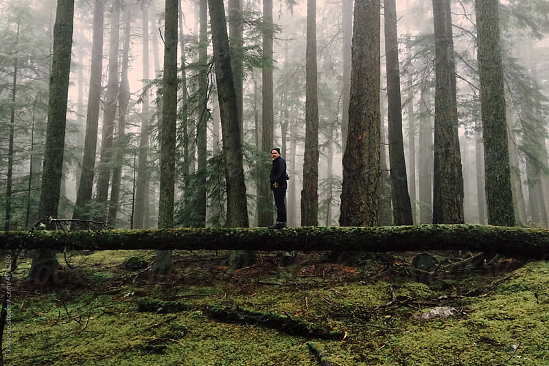 A man stands on a log in a foggy forest  by TJ Macke for Stocksy United