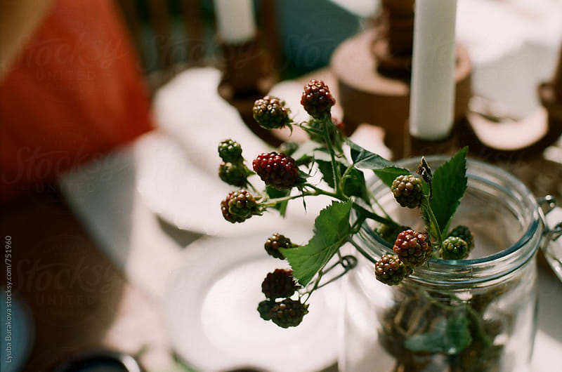 Blackberry as a part of table setting by Liubov Burakova for Stocksy United