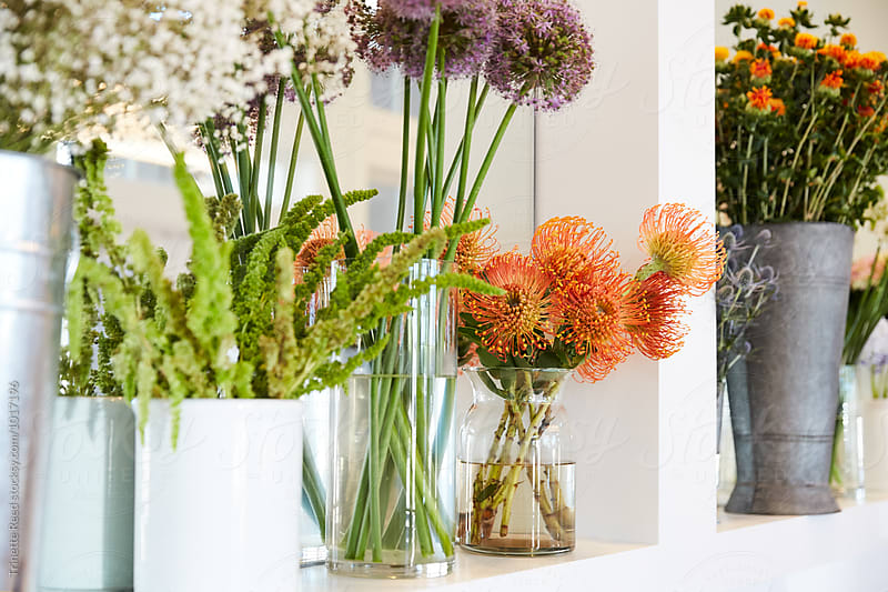 Flowers in vases on shelf by Trinette Reed for Stocksy United