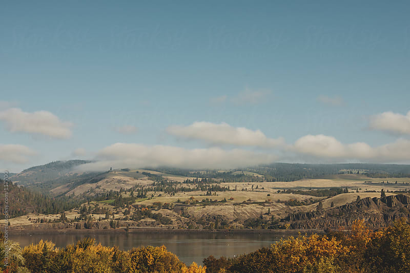 Columbia River by Nicholas Roberts for Stocksy United