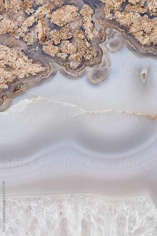 Petrified wood fossil, closeup by Mark Windom for Stocksy United