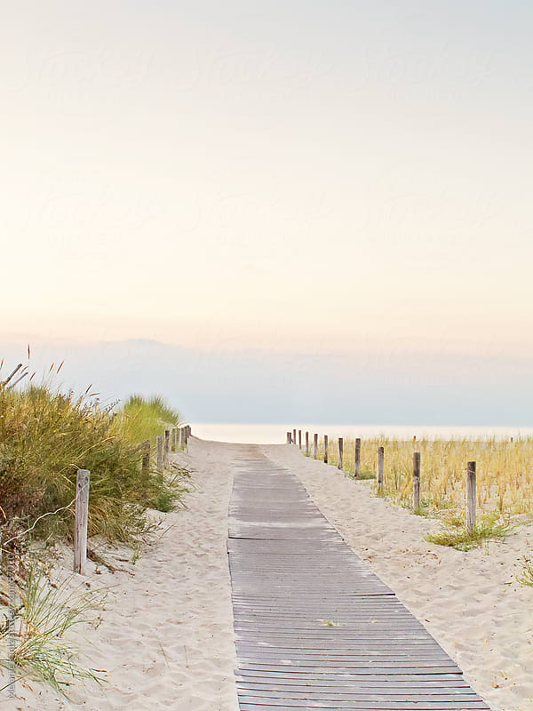 planked path leading through the dunes to the beach at a summer evening by Melanie Kintz for Stocksy United