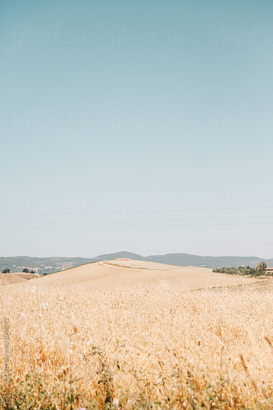 Tuscany, Italy by Giada Canu for Stocksy United
