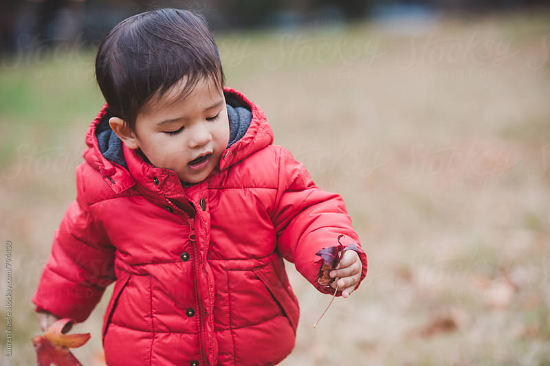 Toddler playing with leaves by Lauren Naefe for Stocksy United