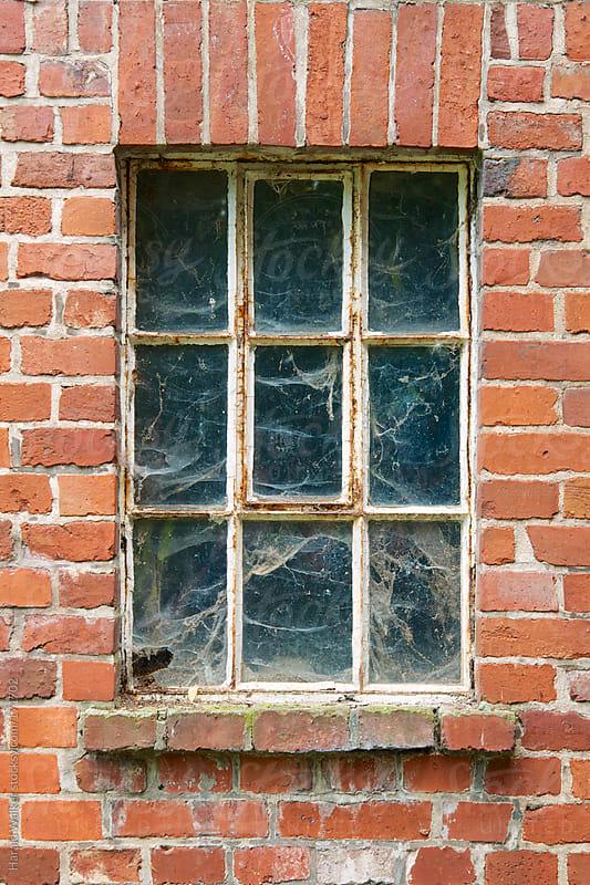 Old window by Harald Walker for Stocksy United