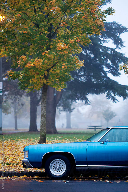 Blue car next to yellow and green leaves on a foggy autumn day in Portland, Oregon by Carleton Photography for Stocksy United