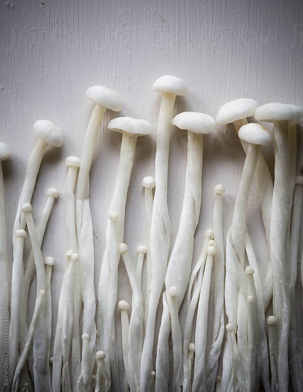 Oriental Japanese Enoki mushrooms. by Rachel Dewis for Stocksy United