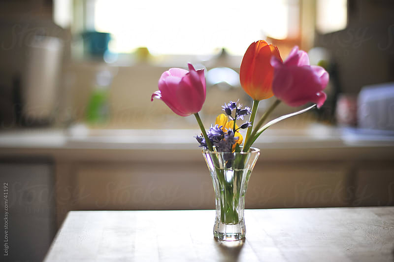 Pink & Orange Tulips in a Crystal Vase in a Kitchen by Leigh Love for Stocksy United