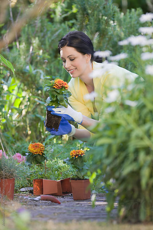 Woman planting flowers in garden by Andersen Ross Photography for Stocksy United