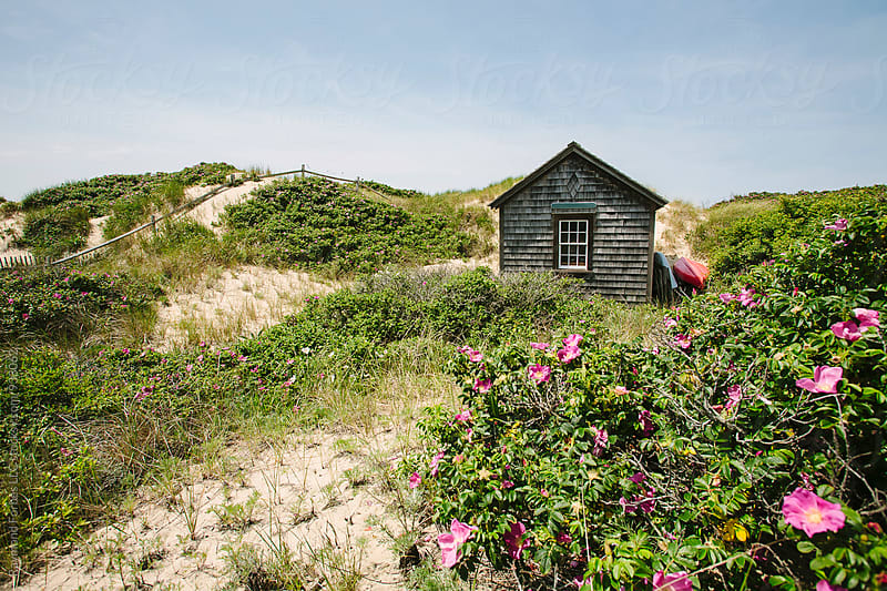 Beach Cottage in Dunes on Nantucket Island by Raymond Forbes LLC for Stocksy United