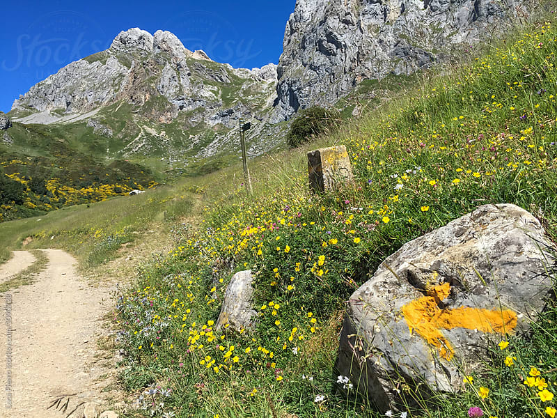 Yellow arrow of the Camino de Santiago on the mountains by Luca Pierro for Stocksy United
