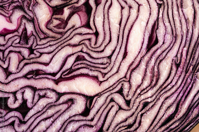 Organic Red Cabbage Closeup by Jeff Wasserman for Stocksy United
