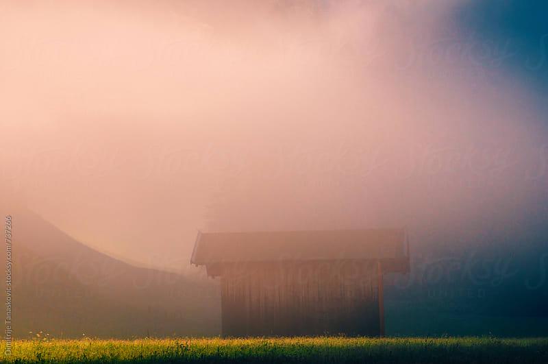 Beautiful morning in the Alps by Dimitrije Tanaskovic for Stocksy United