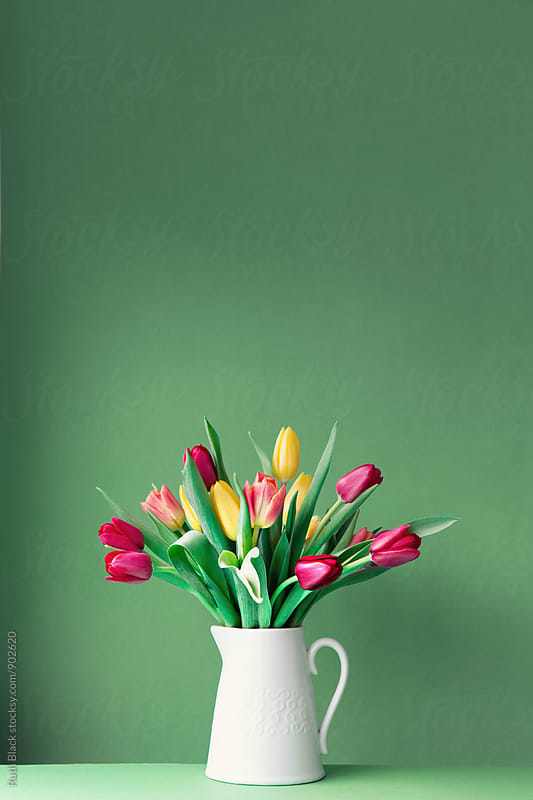 Jug with tulips by Ruth Black for Stocksy United