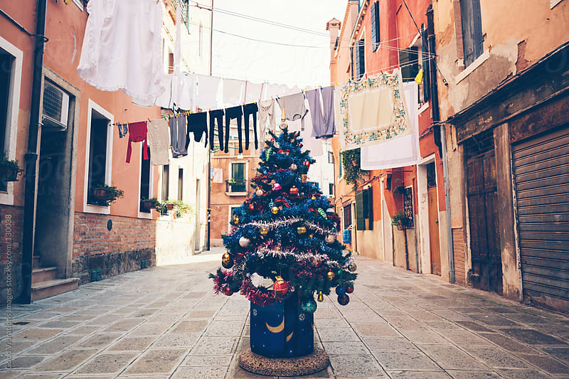 Christmas Tree in Venice by Good Vibrations Images for Stocksy United