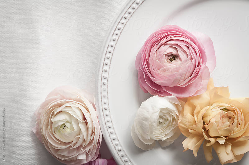Table setting with plate and pastel colored ranunculus flowers by Kristin Duvall for Stocksy United
