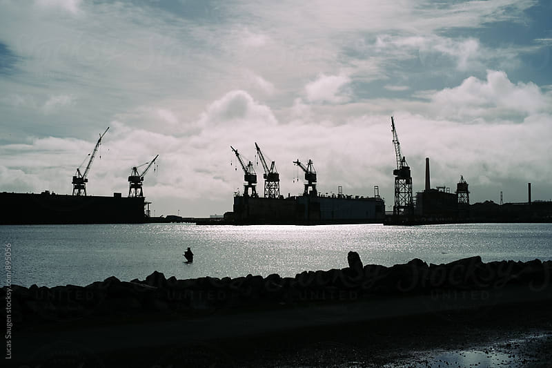 Puffy clouds float above cranes on the bay. by Lucas Saugen for Stocksy United