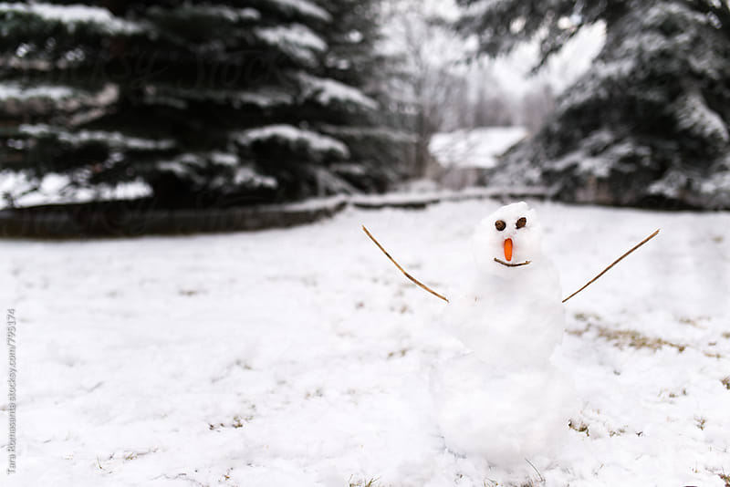 happy snowman with carrot nose and open arms by Tara Romasanta for Stocksy United
