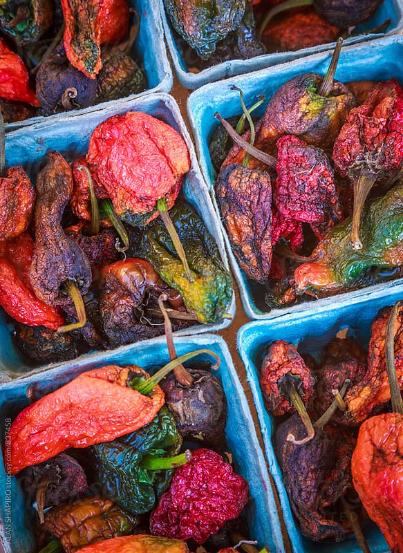 Dried Peppers by alan shapiro for Stocksy United
