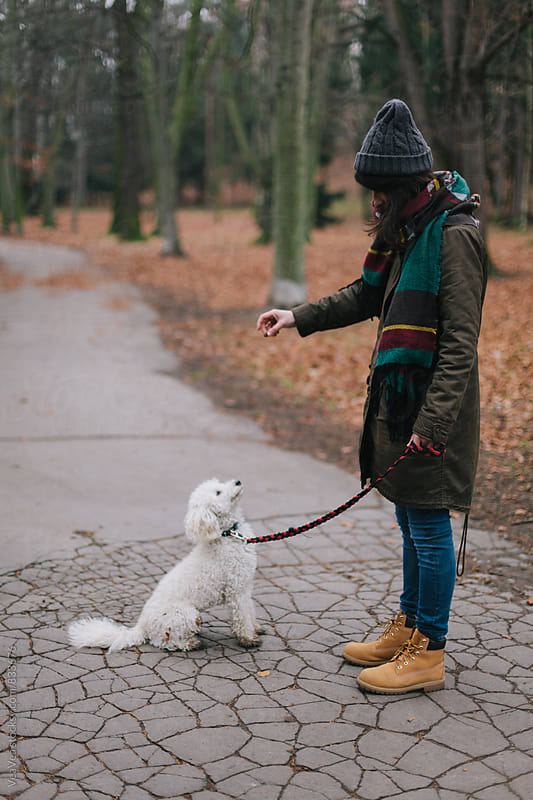 Woman training her dog in the park  by VeaVea for Stocksy United