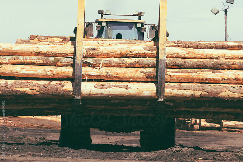 Wheeled log front loader carrying tree trunks by Mihael Blikshteyn for Stocksy United