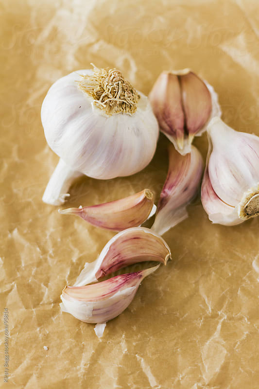 Garlic bulb and cloves on paper by Kirsty Begg for Stocksy United