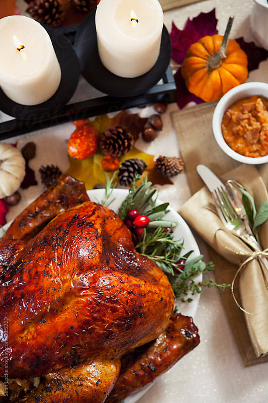 Thanksgiving: Beautiful Thanksgiving Dinner Tablescape by Sean Locke for Stocksy United
