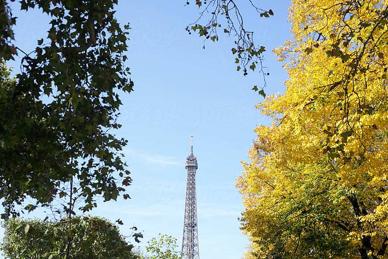 Eiffel tower between autumn leaves by Marcel for Stocksy United