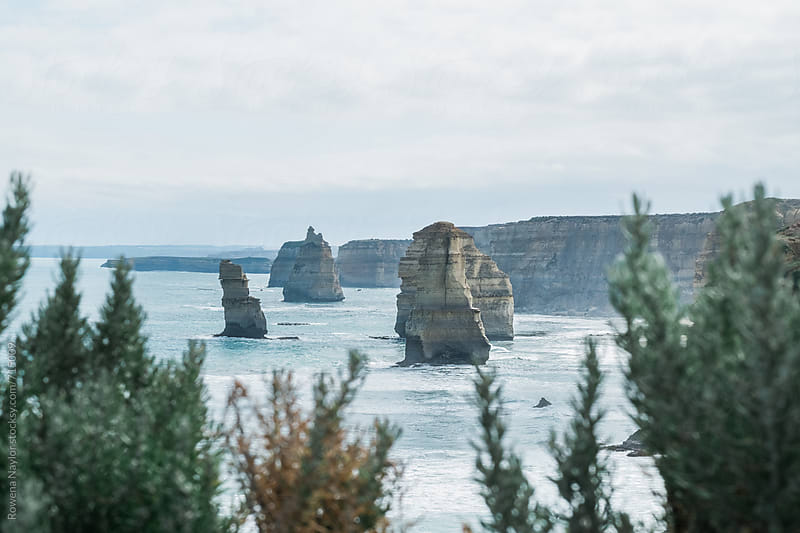 Peeking through bushland at the iconic 12 Apostles, Great Ocean Raod, Australia by Rowena Naylor for Stocksy United