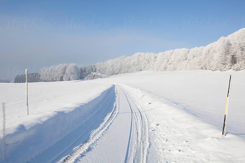 Snow covered road in winter landscape by Robert Kohlhuber for Stocksy United