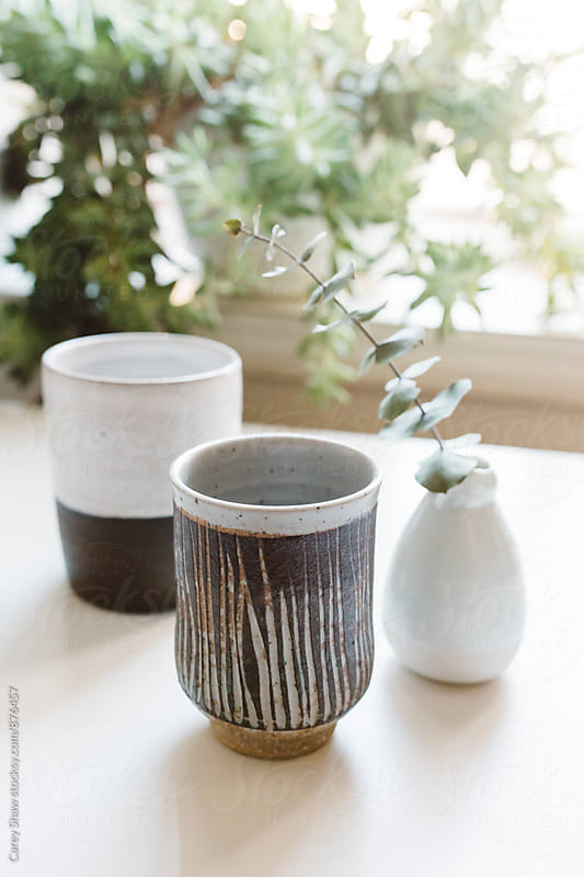 Modern pottery decor and plants  by Carey Shaw for Stocksy United