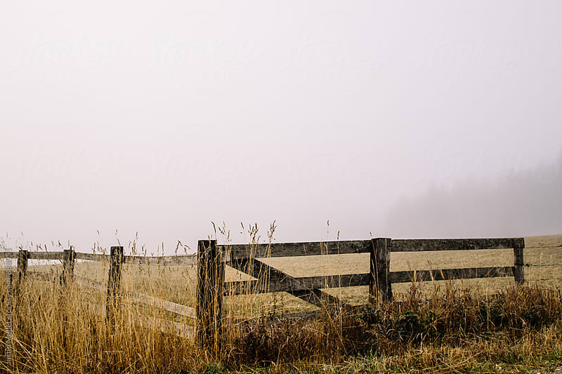Wooden board fence on a foggy morning by Justin Mullet for Stocksy United