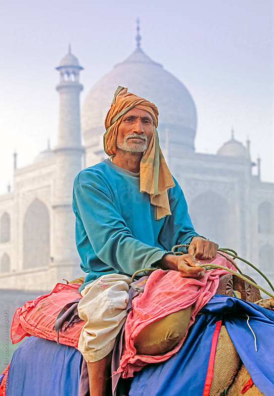 India, Uttar Pradesh, The Taj Mahal, man posing on his camel by Gavin Hellier for Stocksy United