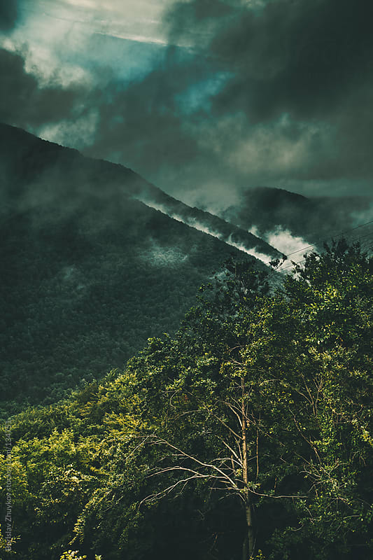 Vapor after rain over the mountain by Borislav Zhuykov for Stocksy United