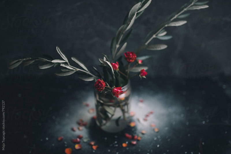 Red roses in a vase against dark background by Maja Topcagic for Stocksy United