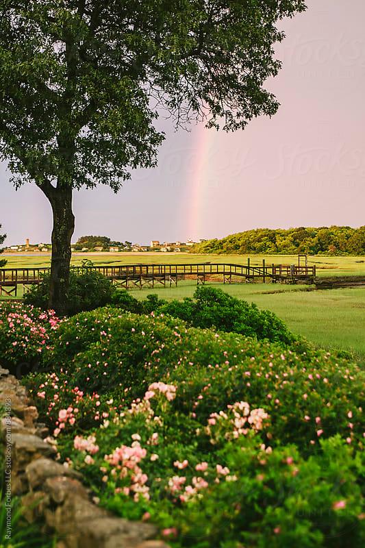 Rainbow on Marsh by Raymond Forbes LLC for Stocksy United