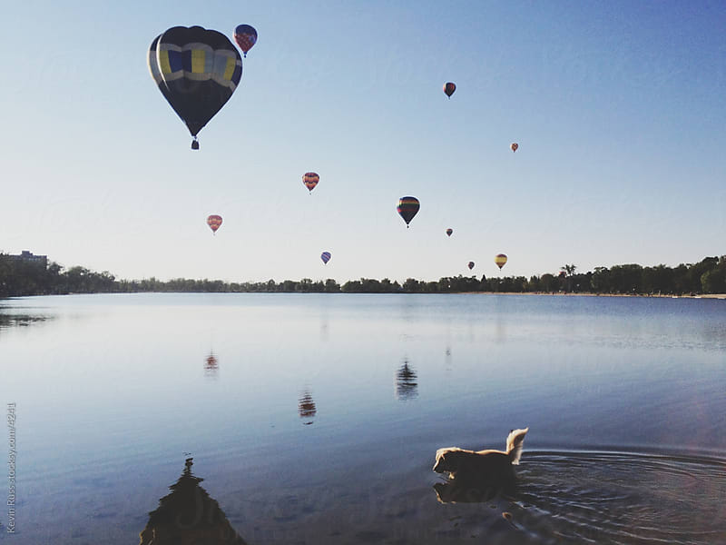 Balloons and Dog in Lake by Kevin Russ for Stocksy United